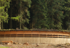 Topplek wildspotten op de Veluwe