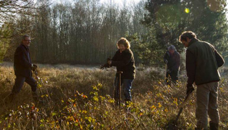 Vrijwilligers gezocht voor natuurgebied De Wilde Kamp