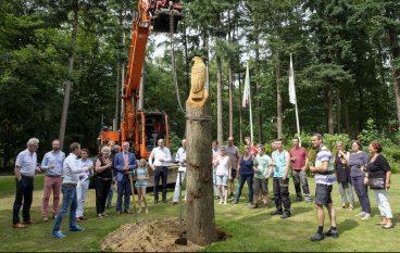 Fotoverslag plaatsing laatste houten kunstwerk in reeks
