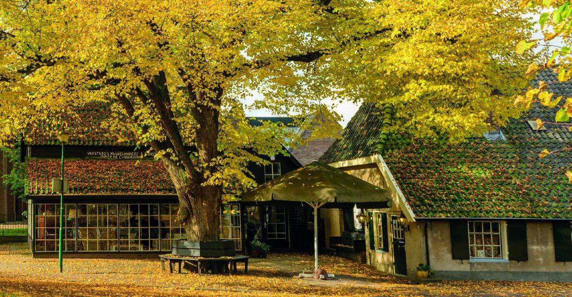 Onder de Lindeboom viert 75-jarig bestaan