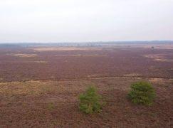 Garderen in beeld: het Houtdorper- en Speulderveld