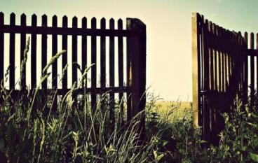 Ontdek The Gate!